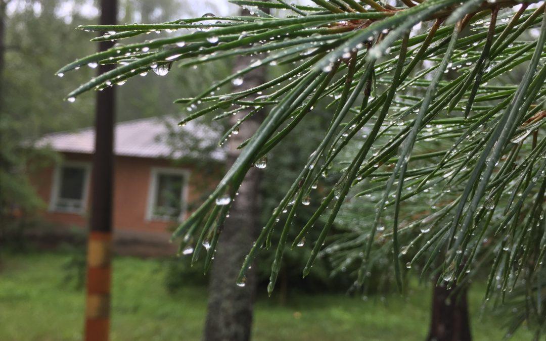 У природы нет плохой погоды…